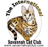 Savannah Cat Club